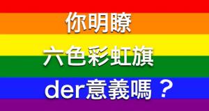 關於同運六色彩虹旗你該知道的(內有兒少不宜圖文)