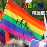 一位男同志寫給尤美女的信:我從小就是男同,我反對同性婚