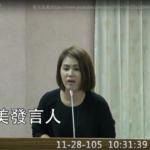 【影音】20161128同婚公聽會-陳慈美(東台灣守護幸福家庭聯盟發言人)